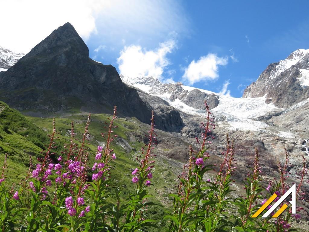 Alpy,Tour du Mont Blanc. Wycieczka alpejska do doliny Val Veny