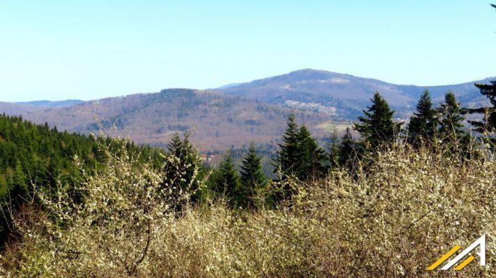 Widok z okolic Gachowizny w kierunku Pasma Jałowieckiego