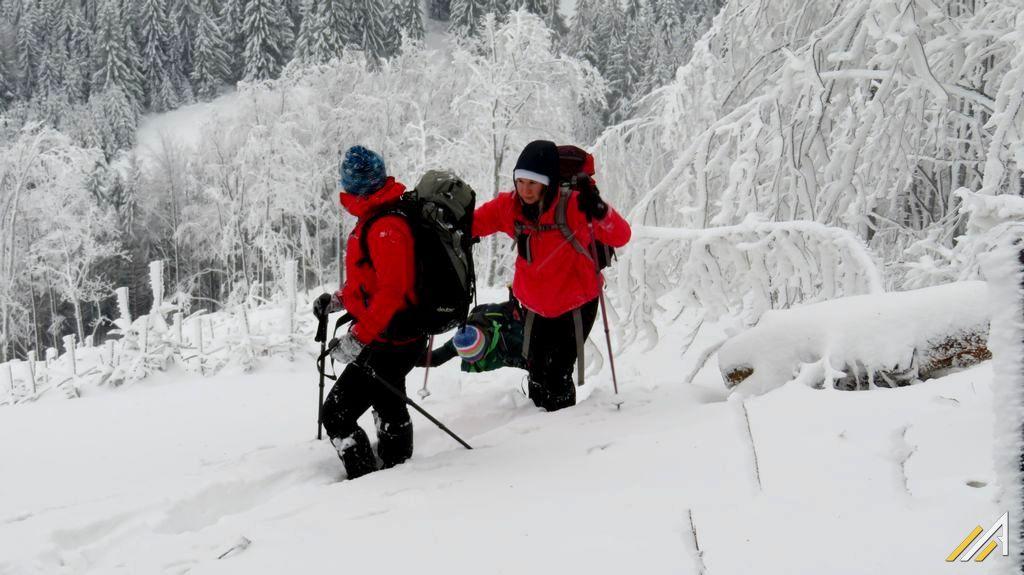 Bukowina w grupie Wielkiej Rycerzowej i Oszusa, trekking górski.