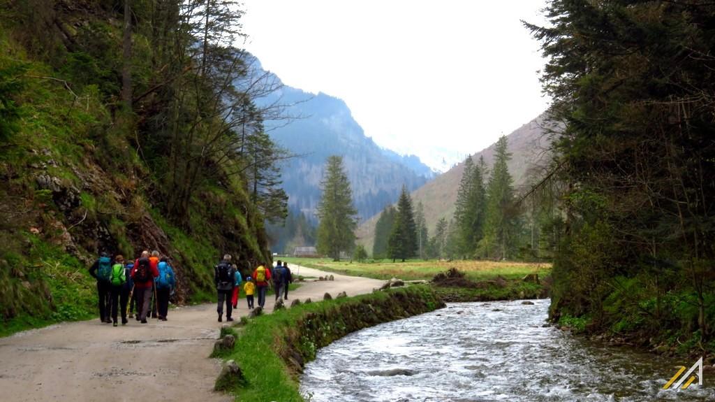 Trekking w Tatrach. Dolina Kościeliska