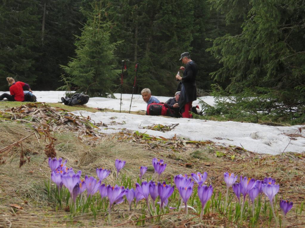 Trekking w Tatrach, Iwaniacka Przełęcz