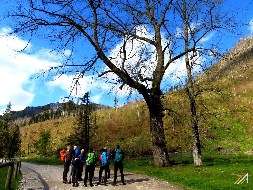 Trekking w Tatrach. Dolina Kościeliska, kapliczka górnicza.