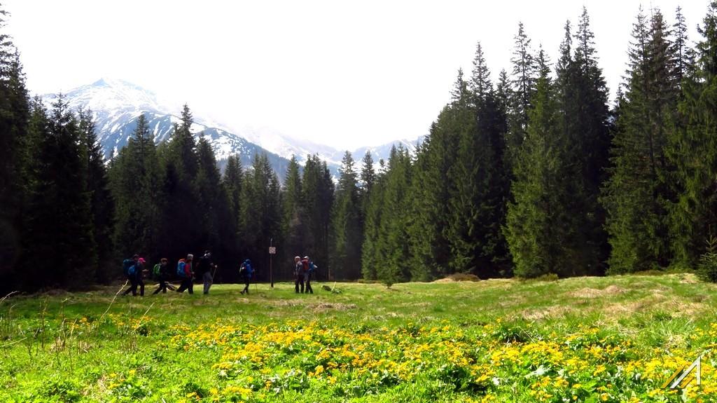 Trekking w Tatrach. Dolina Kościeliska i Hala Ornak