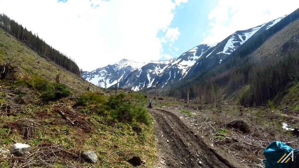 Trekking w Tatrach, Dolina Starorobociańska i Starorobociański Wierch (2176 m n.p.m.)