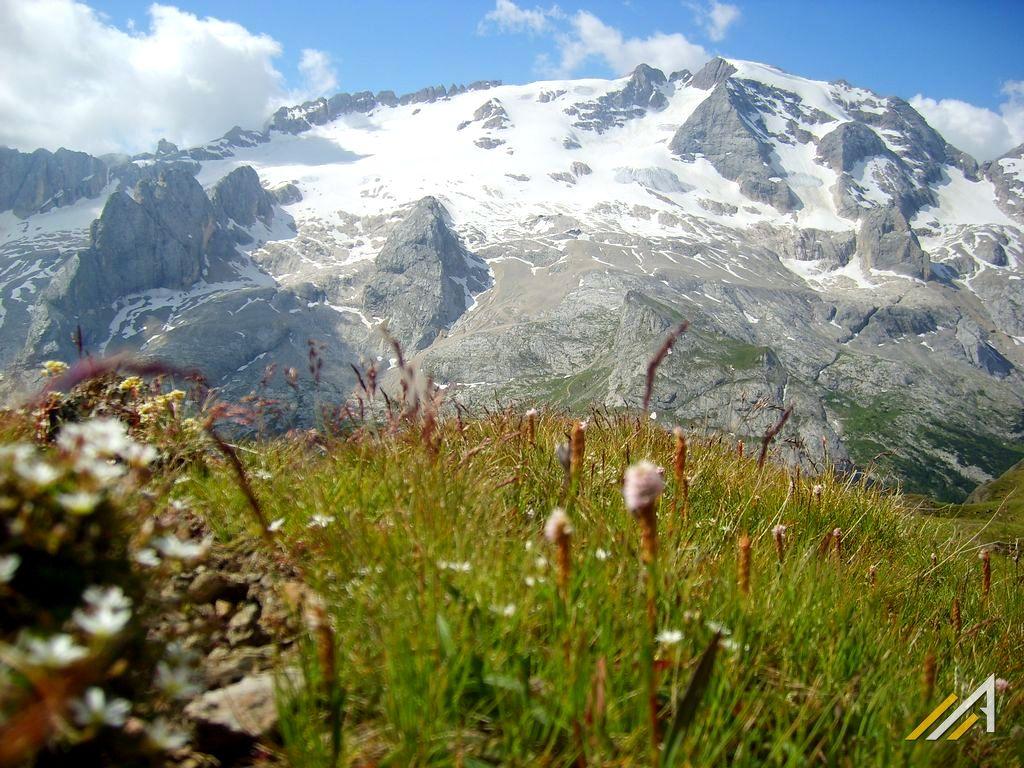 Trekking w Dolomitach. Marmolada, najwyższy szczyt Dolomitów