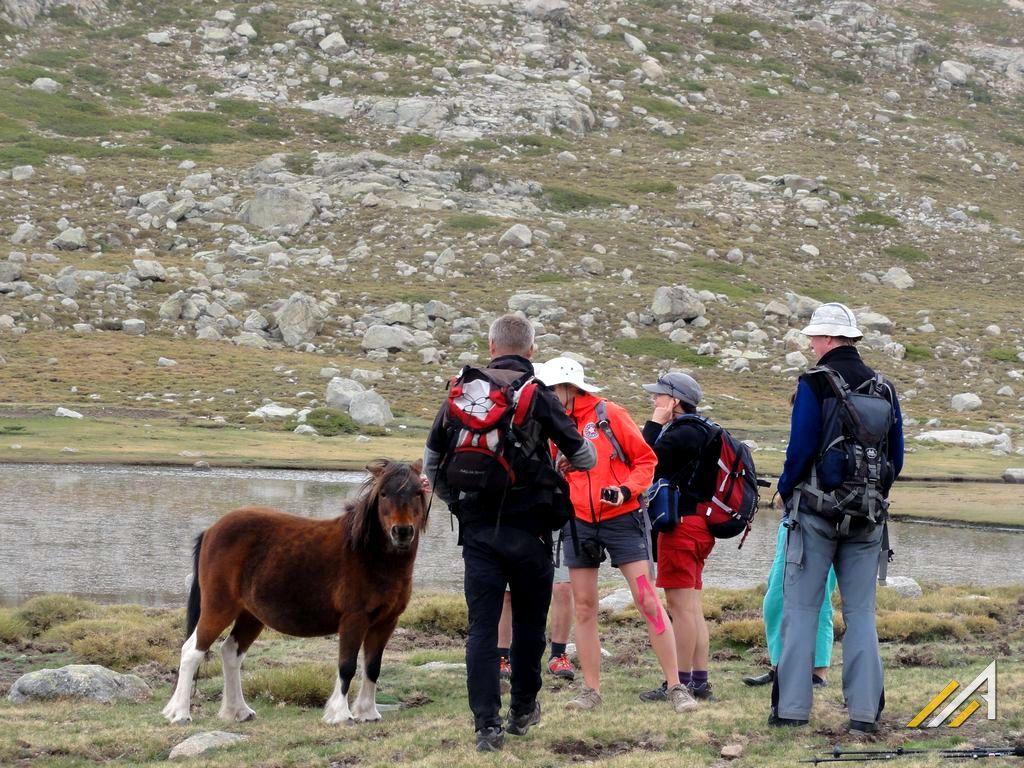Korsyka, trekking szlakiem GR20, Lac de Nino